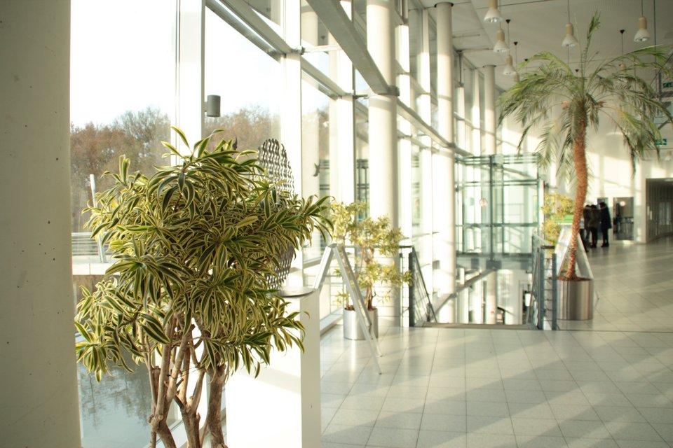 Lichtdurchflutete Eingangshalle am Campus Bocholt