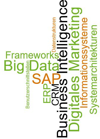 Eine Wortwolke mit folgenden Wörtern: Business-Intelligence, S-A-P, Big-Data, Digitales-Marketing, Frameworks, E-R-P, Informationssysteme, C-R-M, Systemarchitekturen, Benutzerschnittstellen und Datenstrukturen.